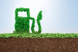 Alternative Fuels, Alternative Fuel Vehicles and Alternative Fuel Sources